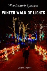 Meadowlark-GardensWinter-Walk-of-Lights1-534x800