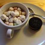 hot chocolate with mini marshmallows, and cookies from Whole Foods Vienna.